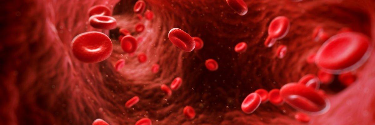 Koraszüléshez vezethet a trombózishajlam
