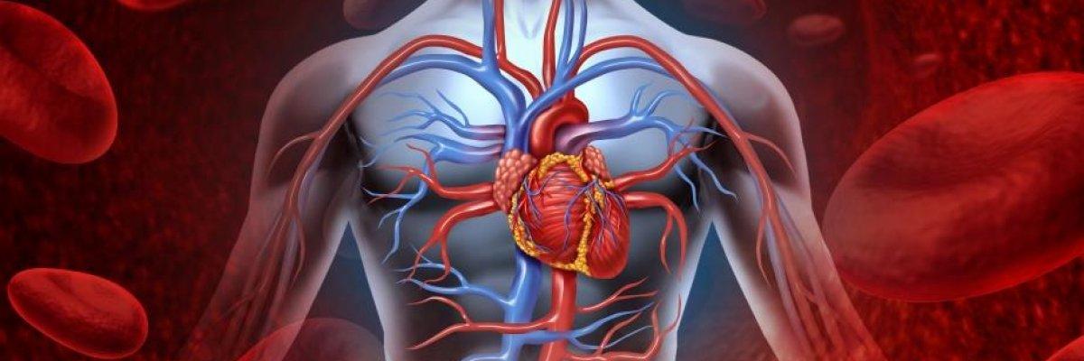 Miért alakulhat ki stroke és trombózis, koronavírus fertőzés miatt?
