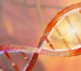 Fokozott trombóziskészséggel járó állapotok
