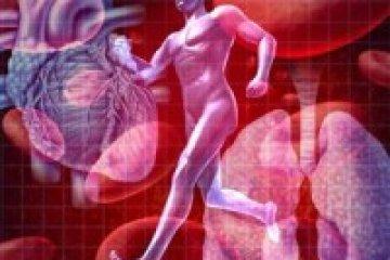 Ismétlődő trombózist okozhat az antifoszfolipid szindróma