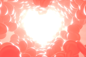 Véralvadási kisokos- mely fogalom mit jelent?