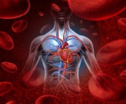 Artériás trombózis- veszélyben vagyok?