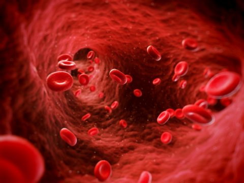 A trombózis az esetek nagy részében megelőzhető