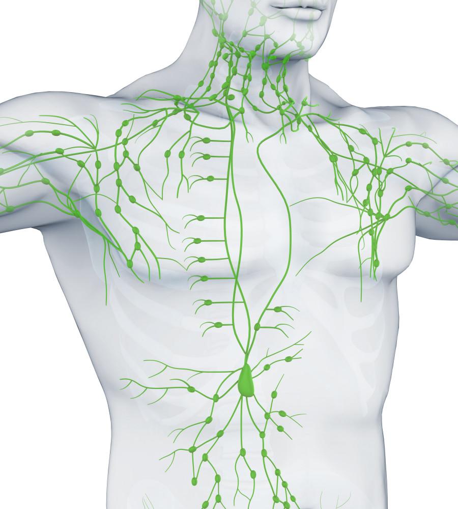 Limfóma: ezekre a tünetekre érdemes figyelni, mert daganatot jelezhetnek - EgészségKalauz